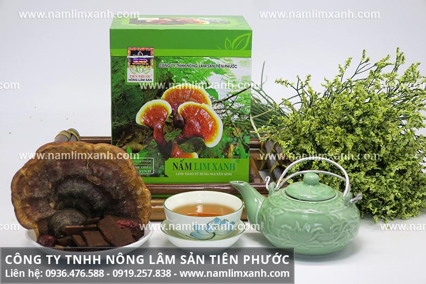 Công dụng nấm lim xanh Quảng Nam nhờ thành phần dược chất của nấm lim xanh