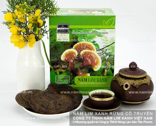 Sản phẩm nấm lim xanh của Công ty Tiên Phước luôn đảm bảo là nấm lim xanh rừng tự nhiên