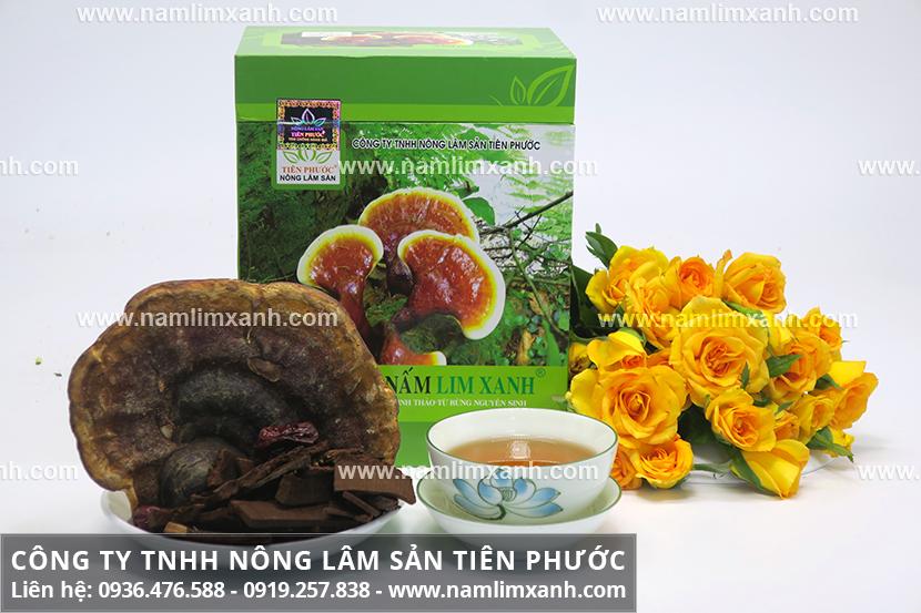 Công ty Nấm lim xanh Tiên Phước có giá tiền nấm lim xanh bao nhiêu?