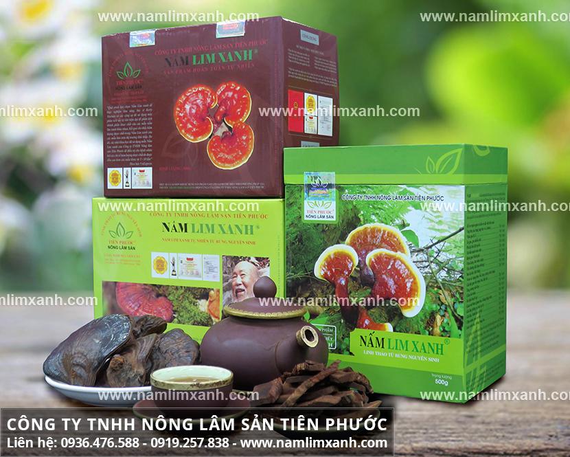 Công ty TNHH Nấm lim xanh Tiên Phước bán nấm cây lim rừng tự nhiên