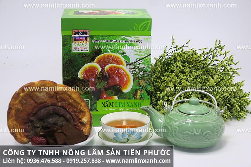 Giá bán nấm lim xanh Tiên Phước của Công ty Nông lâm sản Tiên Phước