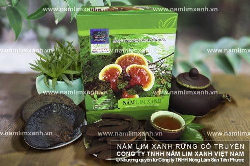 Hình ảnh sản phẩm nấm lim xanh của Công ty nấm lim xanh Tiên Phước