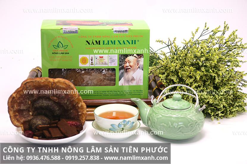 Giá nấm lim xanh rừng Tiên Phước và giá mua nấm cây lim xanh tự nhiên