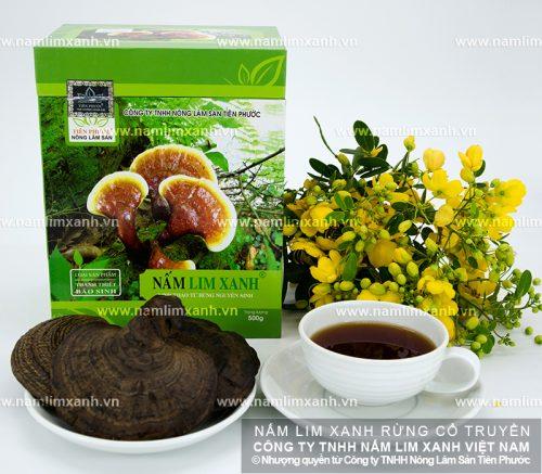 Thông tin về nấm lim xanh Công ty Tiên Phước luôn đảm bảo là nấm lim xanh rừng tự nhiên