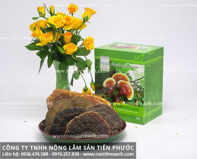 Mua nấm lim xanh ở Hà Nội đúng và cách phân biệt nấm lim xanh thật giả