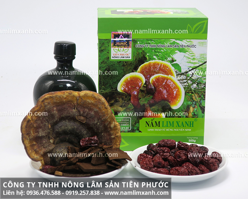 Mua nấm lim xanh rừng và mua bán nấm lim xanh tại Hà Nội ở địa chỉ nào