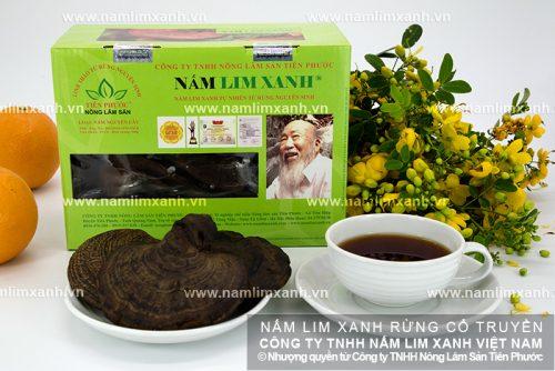 Cách dùng nấm lim xanh Quảng Nam chữa bệnh rất tốt