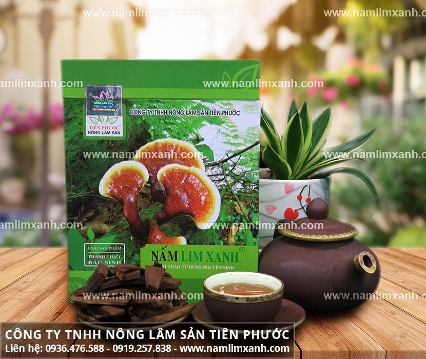 Nấm lim xanh bán ở đâu và cây nấm lim xanh rừng bán ở đâu tại TPHCM?