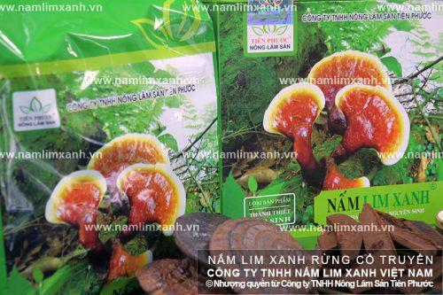 Nấm lim xanh Tiên Phước chỉ được bán tại các cơ sở do công ty ủy quyền