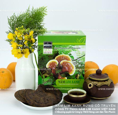 Tác dụng của nấm lim xanh hỗ trợ điều trị bệnh và phục hồi sức khỏe rất tốt