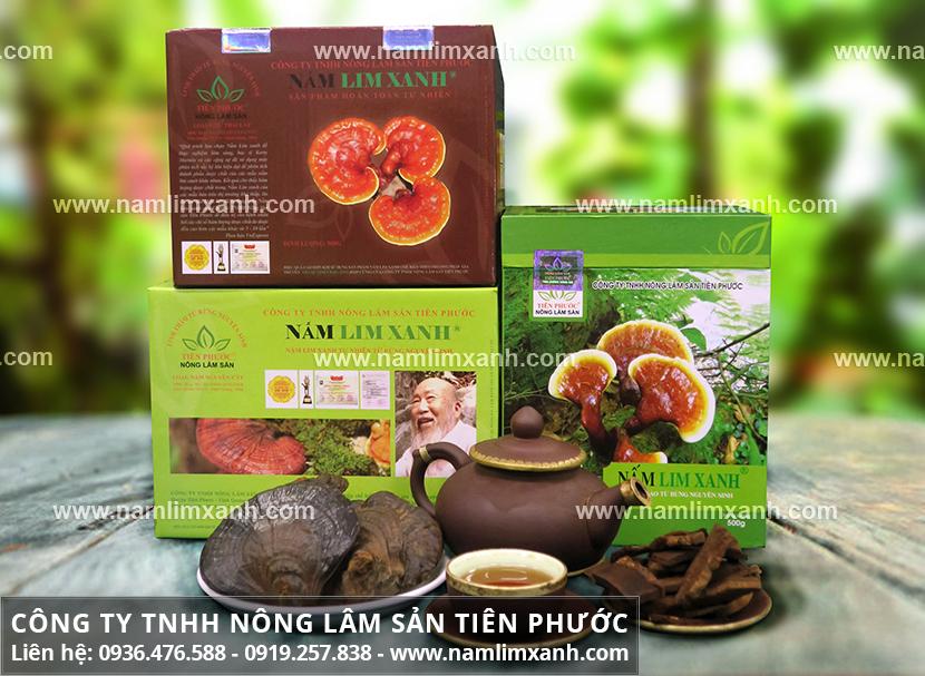 Nấm lim xanh Công ty Tiên Phước và cách dùng nấm lim rừng tự nhiên