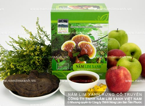Giá nấm lim xanh Tiên Phước phù hợp với chất lượng sản phẩm