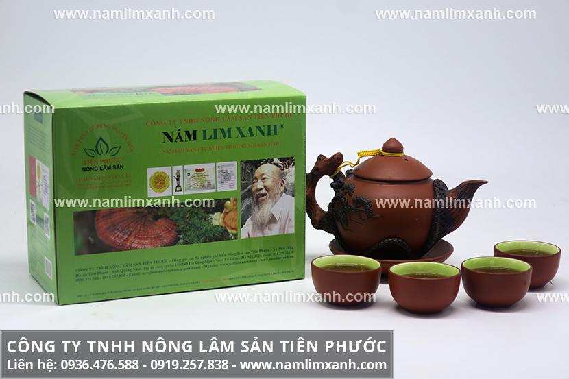 Nấm lim xanh Quảng Nam chính gốc và dược chất của nấm lim Quảng Nam