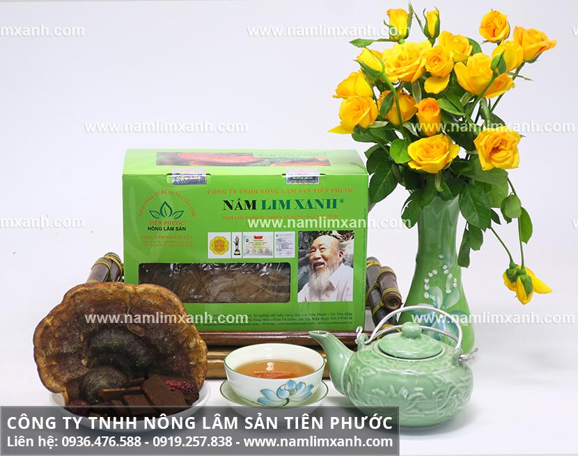 Nấm lim xanh Quảng Ninh và cách dùng nấm lim xanh sắc nước uống