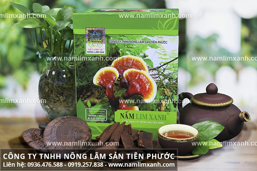Nấm lim xanh Quảng Ninh và cách dùng nấm lim xanh Tiên Phước pha trà