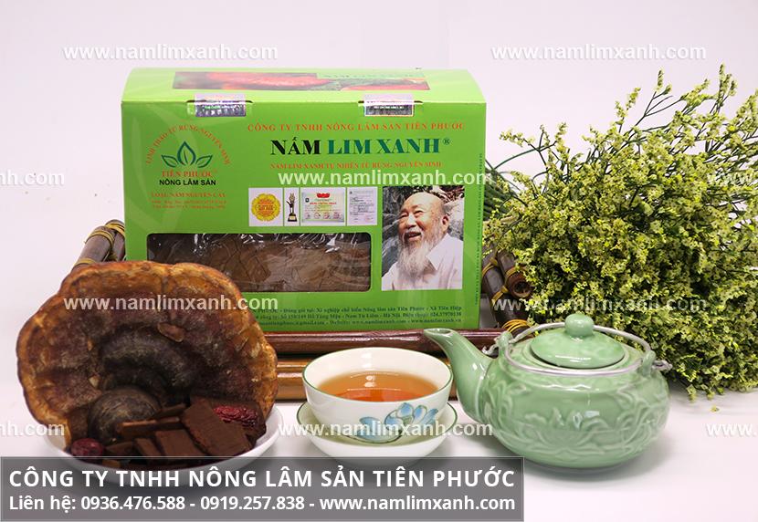 Nấm lim xanh rừng Lào và công dụng nấm lim xanh của Lào chữa ung thư
