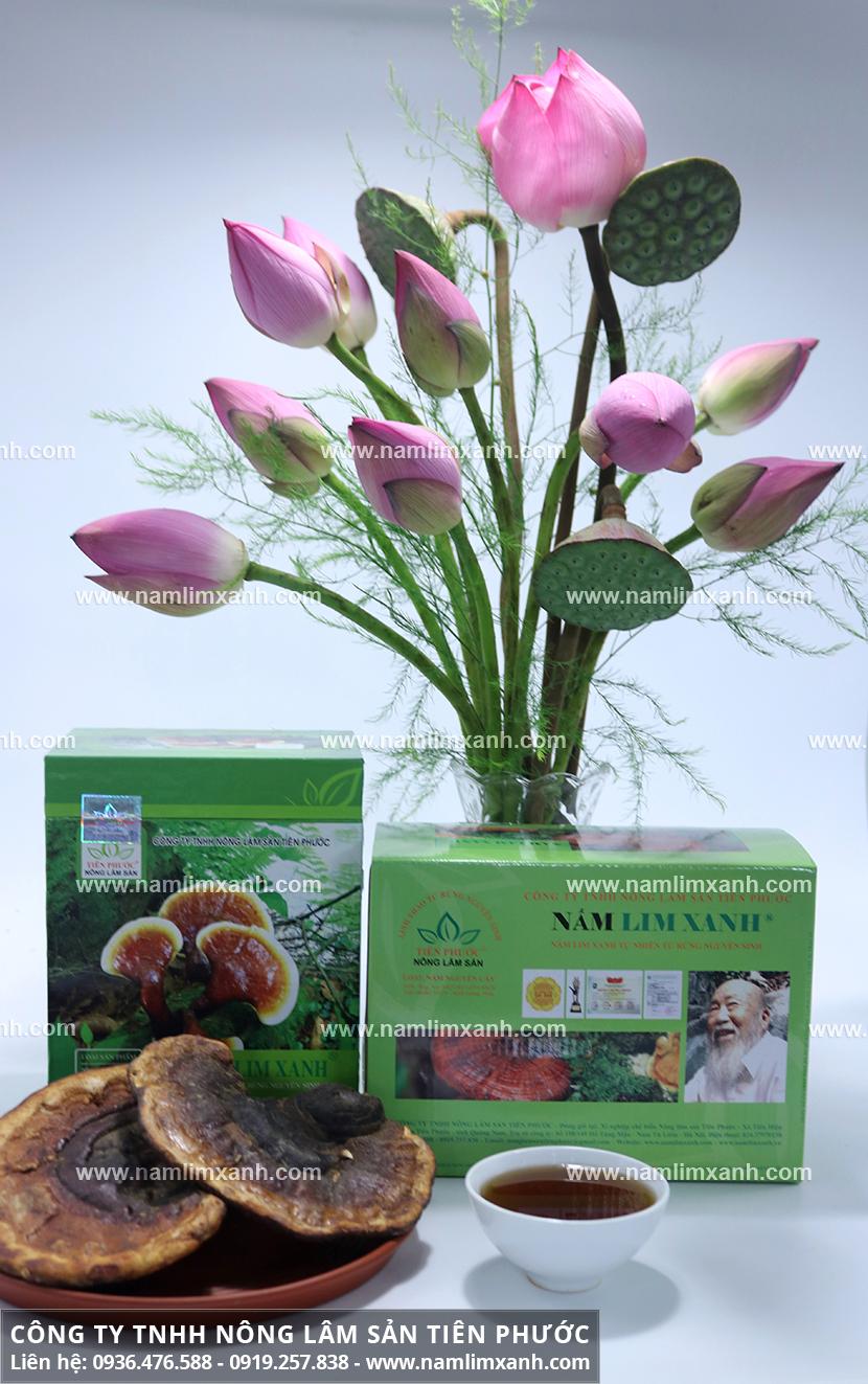 Nơi bán nấm lim xanh tại Hà Nội và Công ty Nông lâm sản Tiên Phước