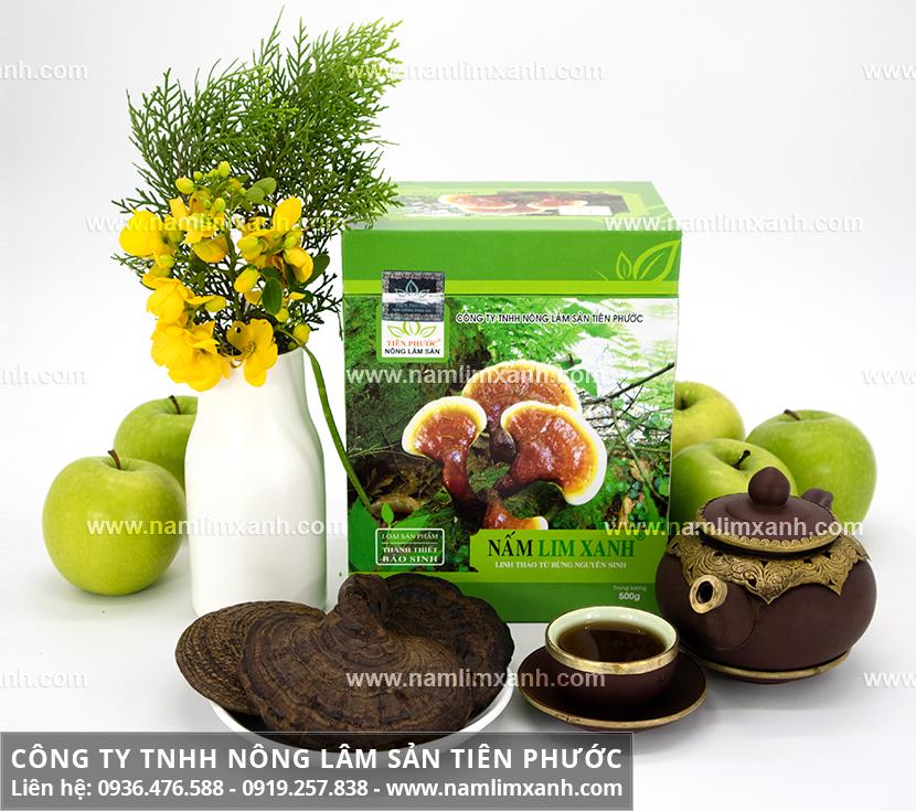 Sử dụng nấm lim xanh trị bệnh và cách dùng nấm cây lim xanh ngâm rượu