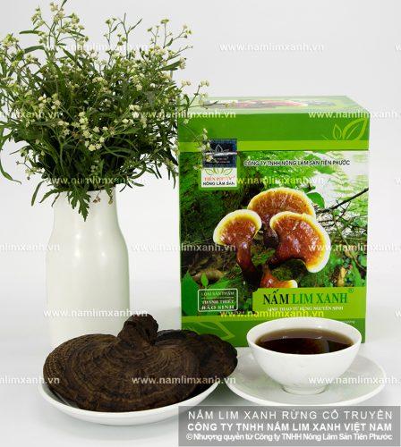 Sản phẩm nấm lim xanh của Công ty TNHH Nông lâm sản Tiên Phước dùng để ngâm rượu đạt kết quả cao