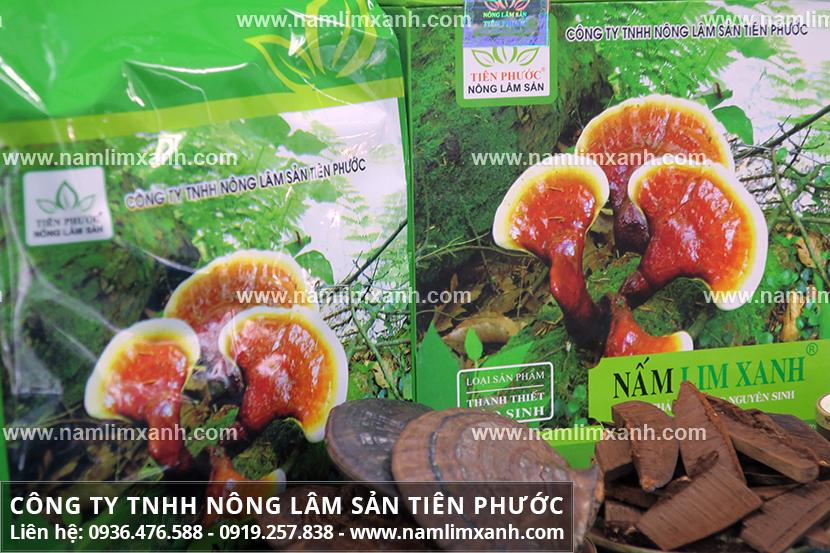 Tác dụng nấm lim rừng nhờ các thành phần dược chất của nấm lim xanh
