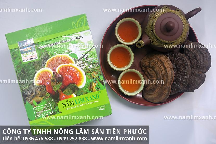 Tìm hiểu về nấm lim xanh với thành phần dược chất trong nấm lim rừng