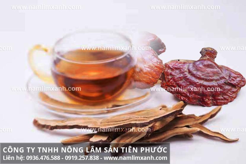 Uống nấm lim xanh kiêng gì với cách dùng nấm lim xanh rừng Quảng Nam