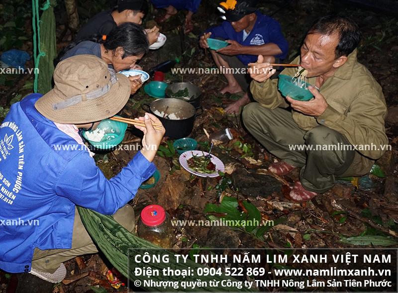 Bữa cơm trong rừng của đội thợ tìm nấm lim xanh.