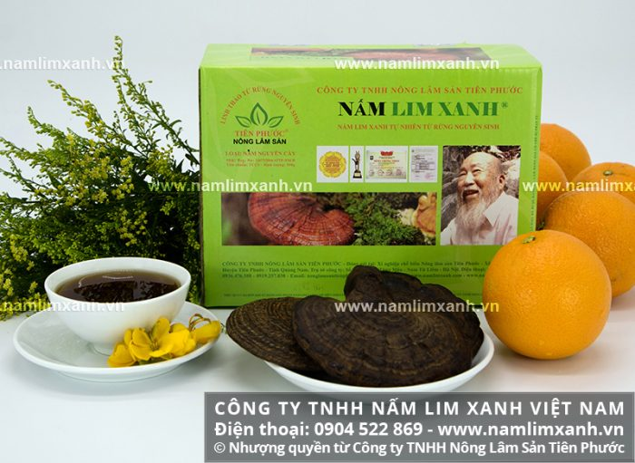 Giá bán nấm lim xanh rừng nguyên cây của Công ty nấm lim xanh Tiên Phước.