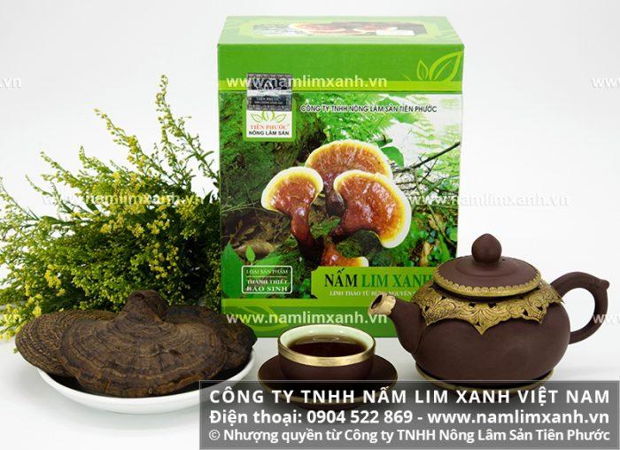 Tác dụng của nấm lim xanh Tiên Phước chữa bệnh là nấm lim xanh rừng có tác dụng tốt.