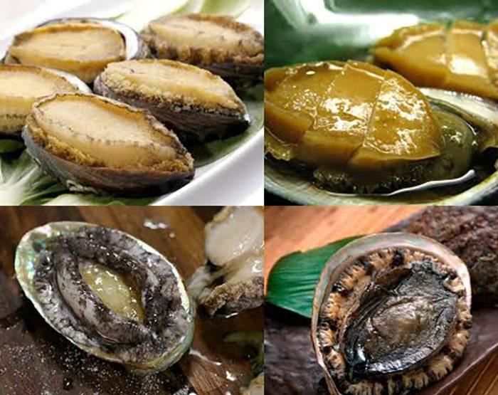Tác dụng và cách dùng bào ngư cũng như giá bào ngư bao nhiêu tiền 1kg