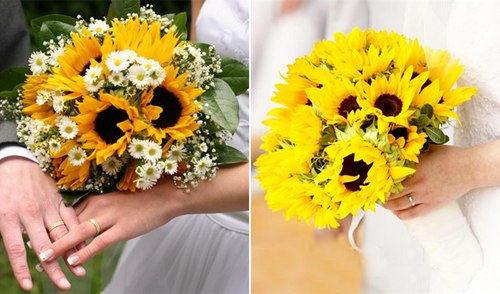 Hình ảnh hoa hướng dương cầm tay