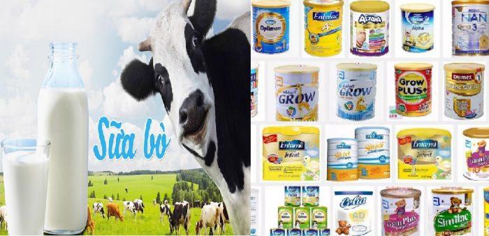 Nguồn gốc của sữa rất phong phú và đa dạng