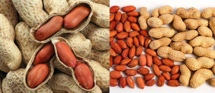 Tác dụng của cây đậu phộng