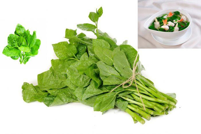 Thành phần dược chất của rau mùng tơi