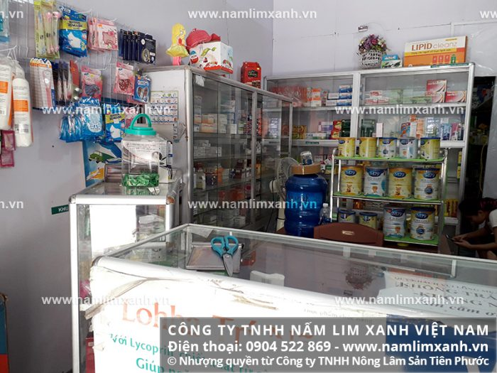 Địa chỉ bán nấm lim xanh rừng tự nhiên của Công ty TNHH Nấm lim xanh Việt Nam tại Quảng Trị