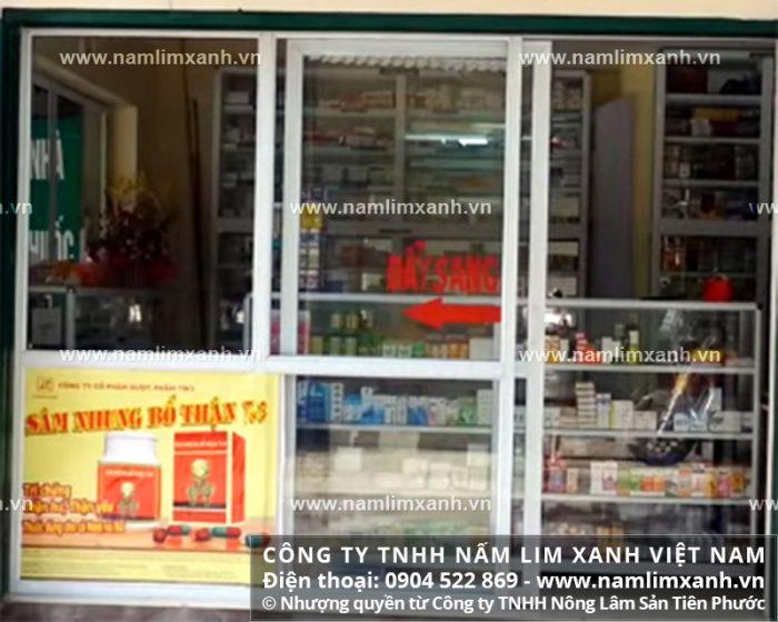 Địa chỉ bán nấm lim xanh rừng tự nhiên của Công ty TNHH Nấm lim xanh Việt Nam tại Tuyên Quang