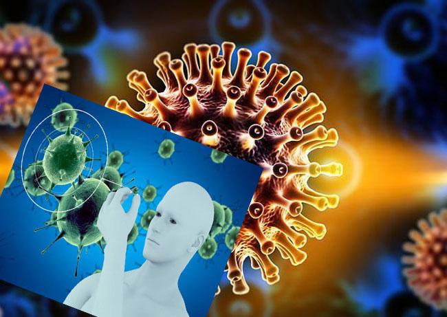 Hệ miễn dịch giúp cơ thể không mắc phải nhiều căn bệnh
